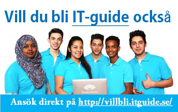 http://villbli.it-guide.se/